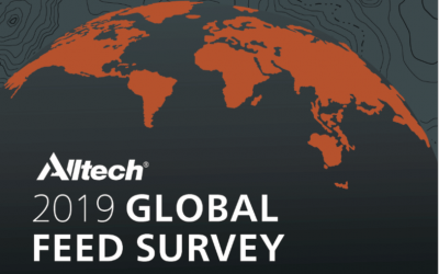 Global Feed Survey